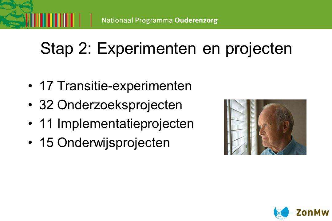 Stap 2: Experimenten en projecten