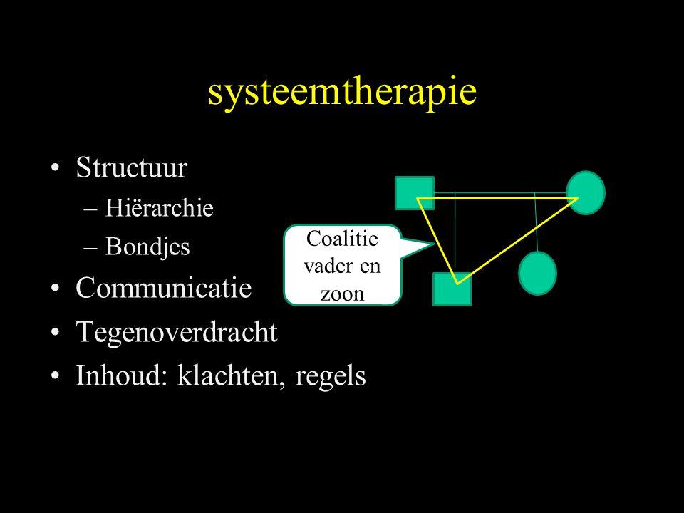 systeemtherapie Structuur Communicatie Tegenoverdracht