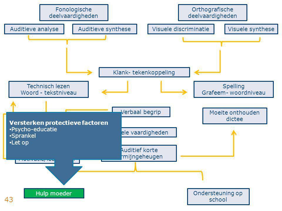 Fonologische deelvaardigheden Orthografische deelvaardigheden