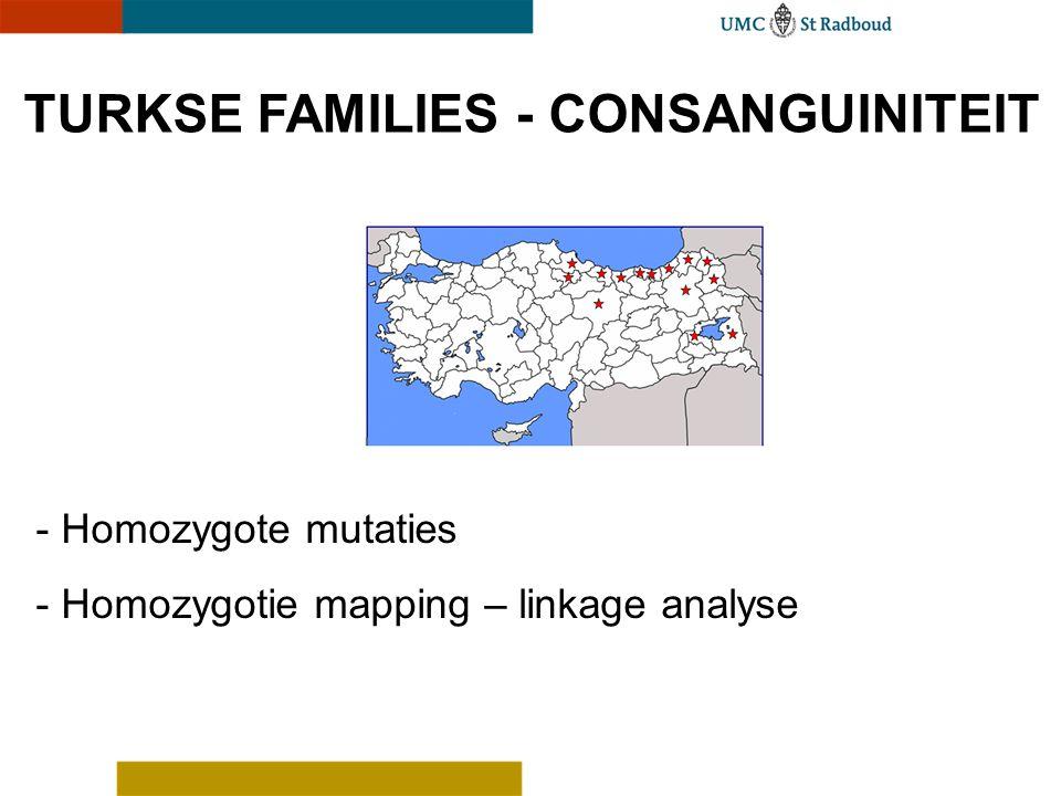 TURKSE FAMILIES - CONSANGUINITEIT