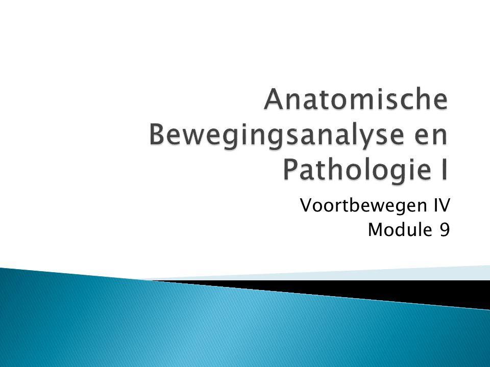 Anatomische Bewegingsanalyse en Pathologie I