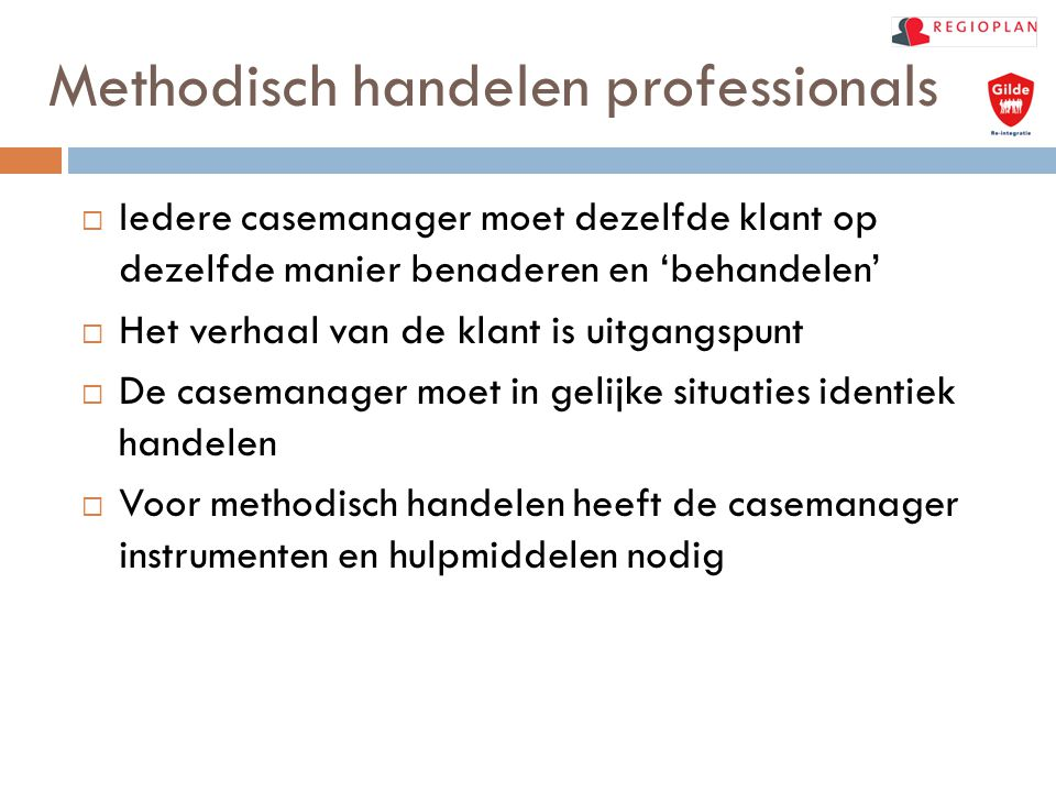 Methodisch handelen professionals