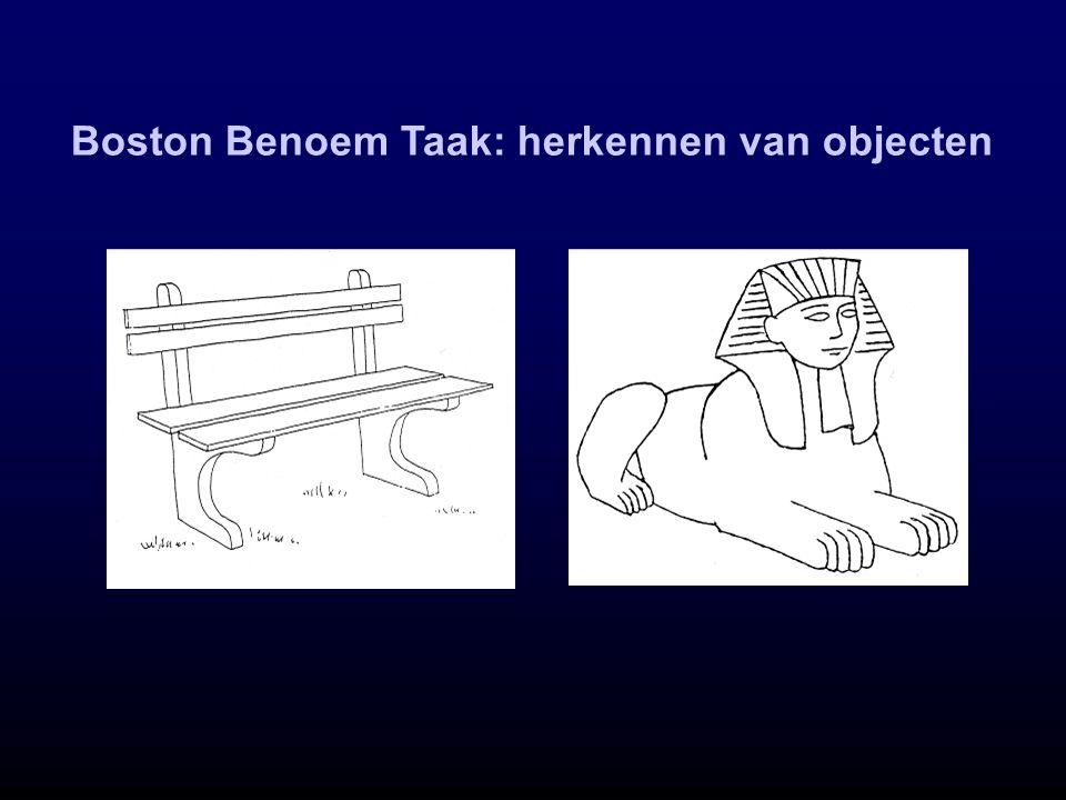 Boston Benoem Taak: herkennen van objecten