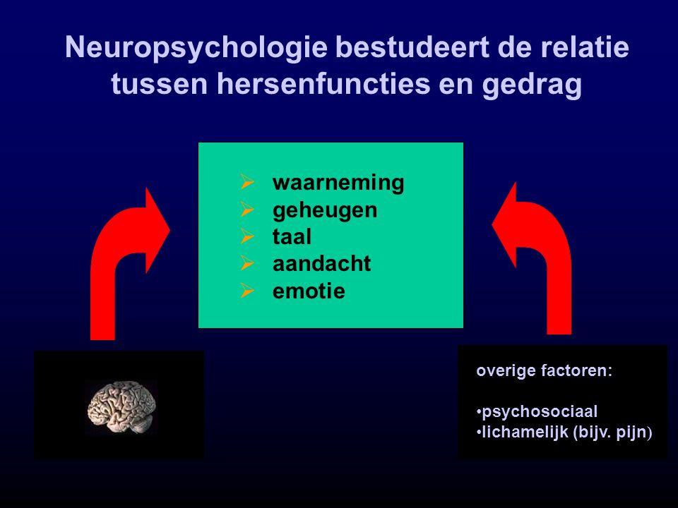 Neuropsychologie bestudeert de relatie tussen hersenfuncties en gedrag