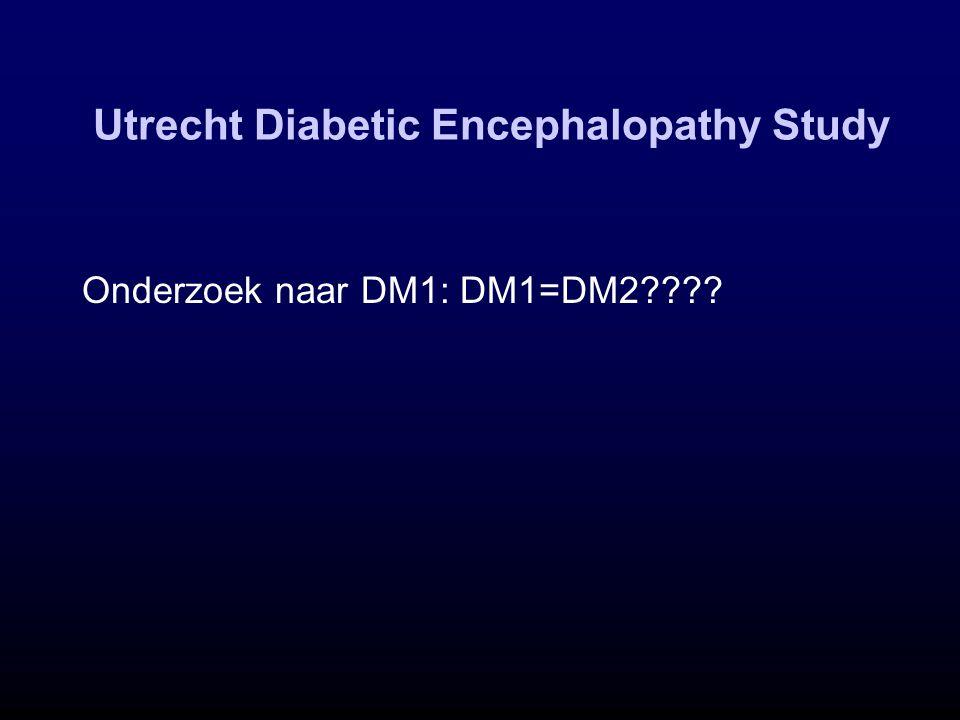 Utrecht Diabetic Encephalopathy Study