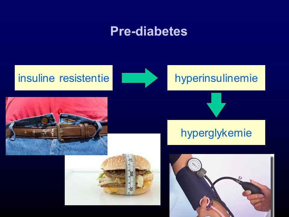 Pre-diabetes insuline resistentie hyperinsulinemie hyperglykemie