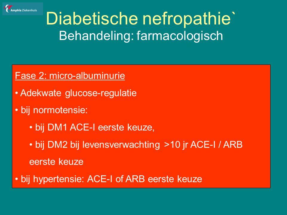 Diabetische nefropathie`