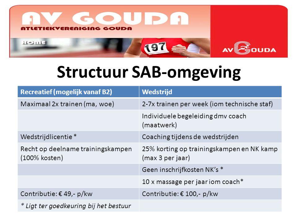 Structuur SAB-omgeving