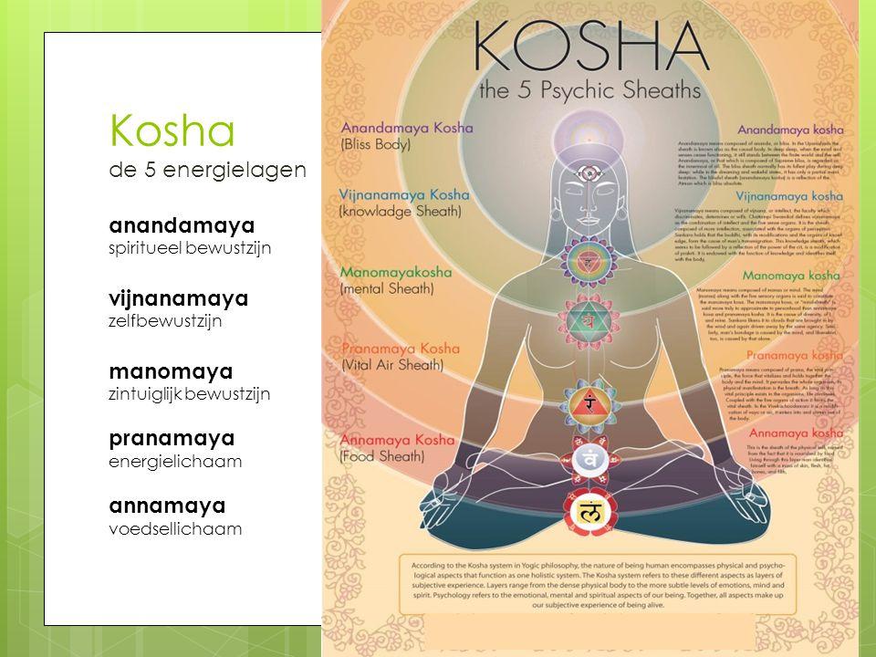 Kosha de 5 energielagen anandamaya spiritueel bewustzijn vijnanamaya zelfbewustzijn manomaya zintuiglijk bewustzijn pranamaya energielichaam annamaya voedsellichaam