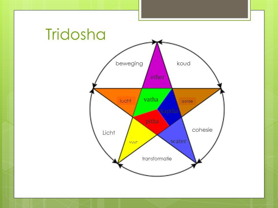 Tridosha beweging koud cohesie Licht lucht