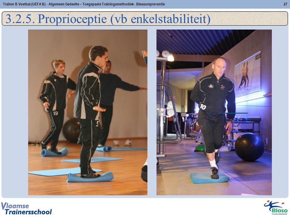 3.2.5. Proprioceptie (vb enkelstabiliteit)