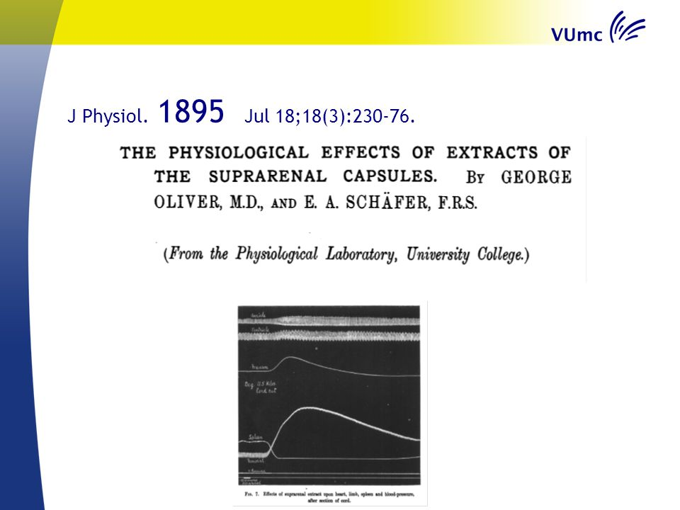 J Physiol. 1895 Jul 18;18(3):230-76.