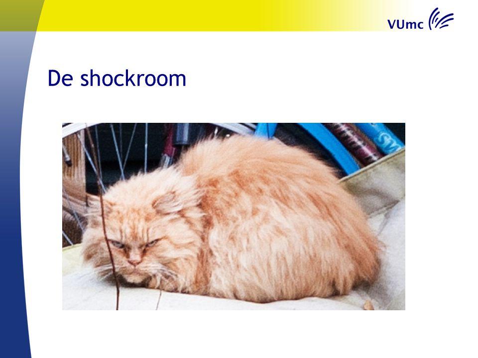 De shockroom