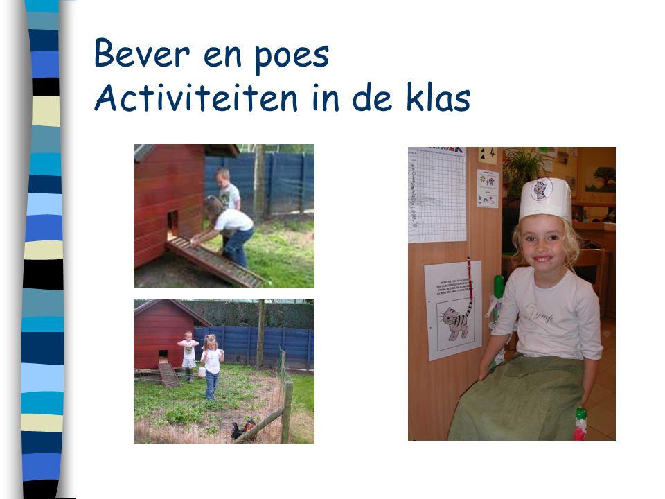 Bever en poes Activiteiten in de klas