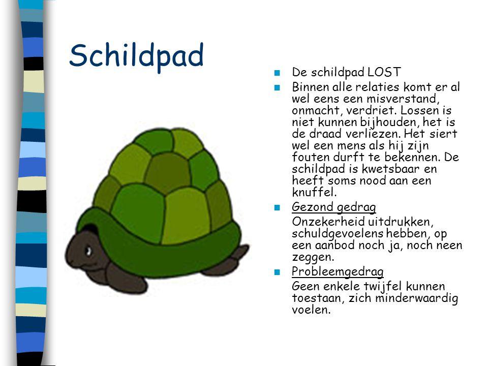 Schildpad De schildpad LOST