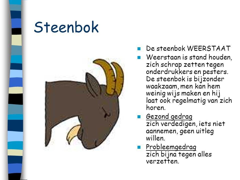Steenbok De steenbok WEERSTAAT
