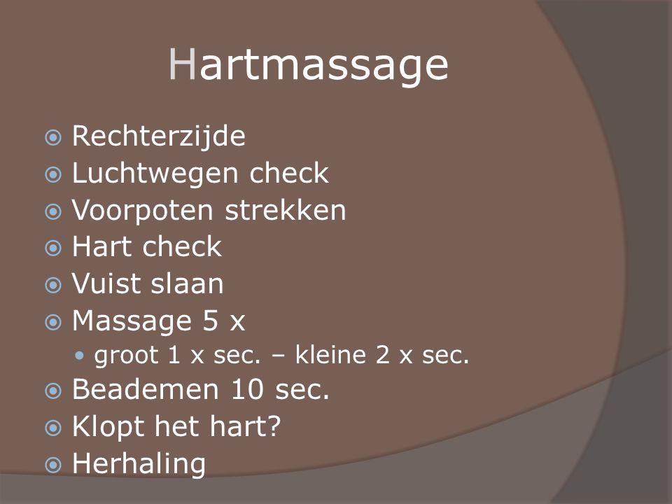 Hartmassage Rechterzijde Luchtwegen check Voorpoten strekken