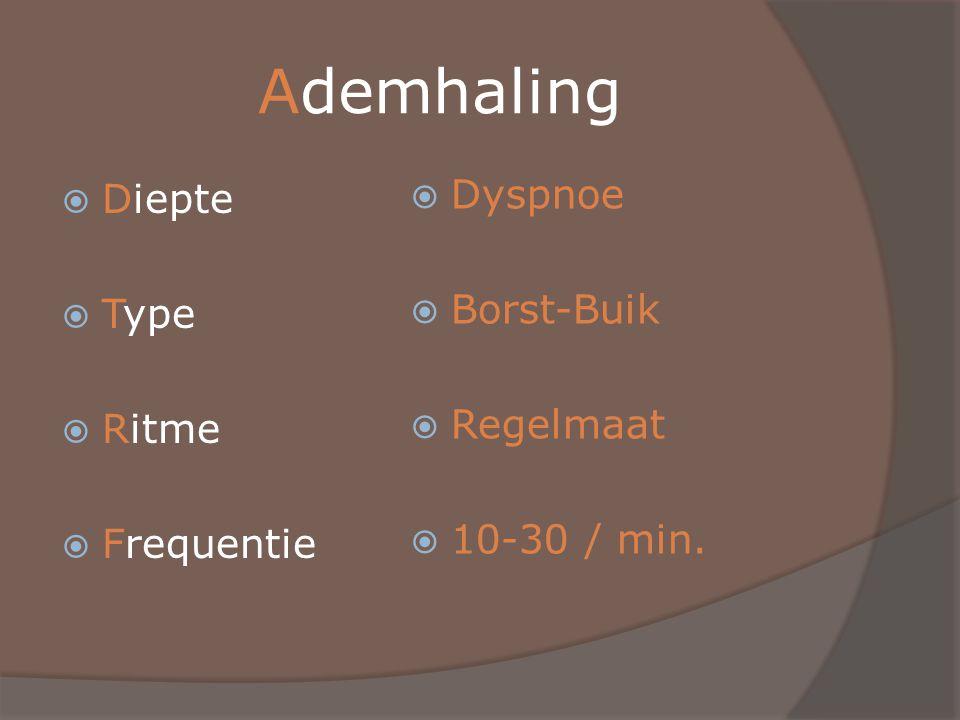 Ademhaling Dyspnoe Diepte Borst-Buik Type Regelmaat Ritme 10-30 / min.