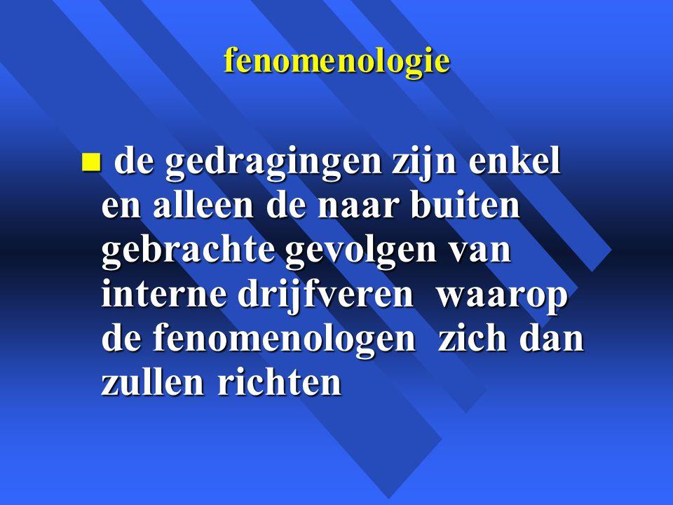 fenomenologie