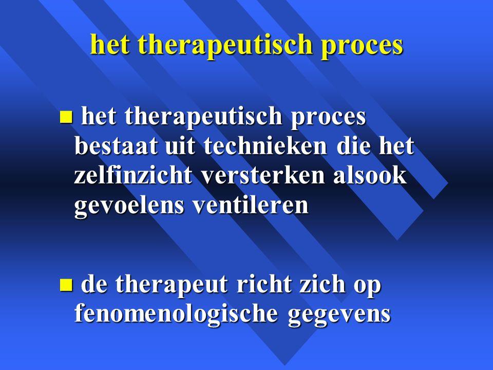 het therapeutisch proces