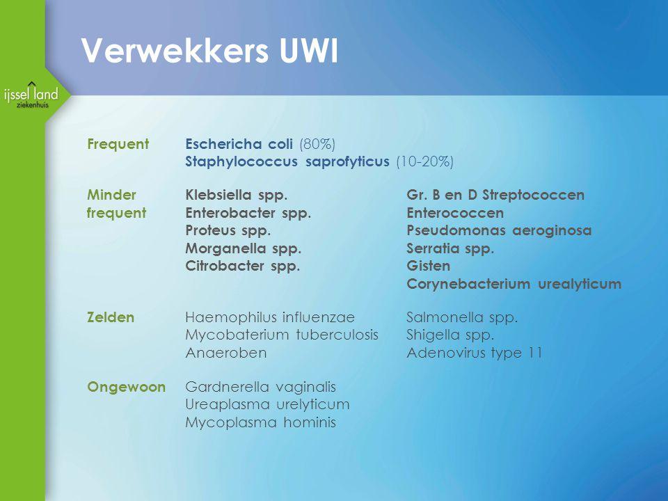 Verwekkers UWI Frequent Eschericha coli (80%)