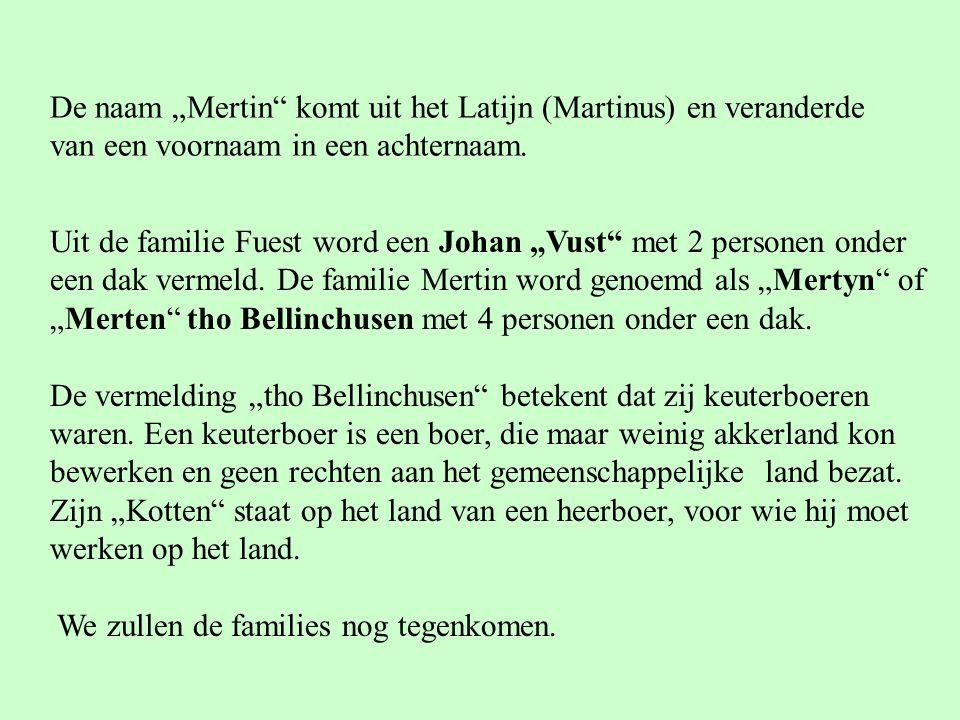 """De naam """"Mertin komt uit het Latijn (Martinus) en veranderde"""