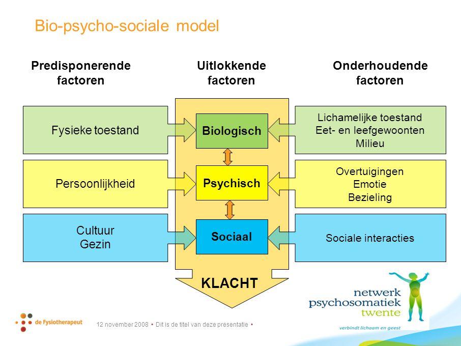 Bio-psycho-sociale model