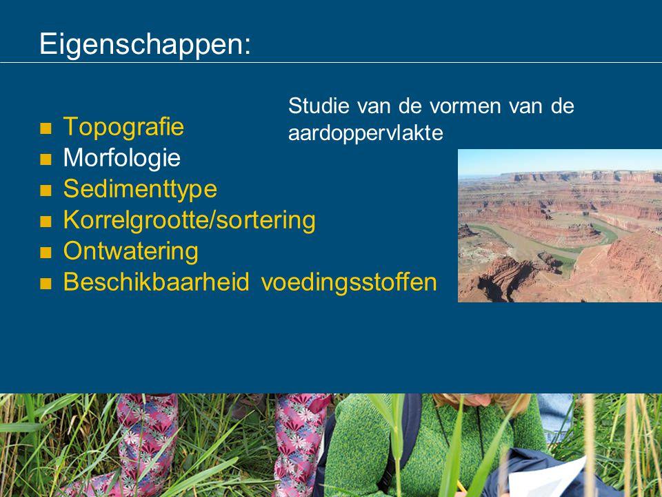 Eigenschappen: Topografie Morfologie Sedimenttype