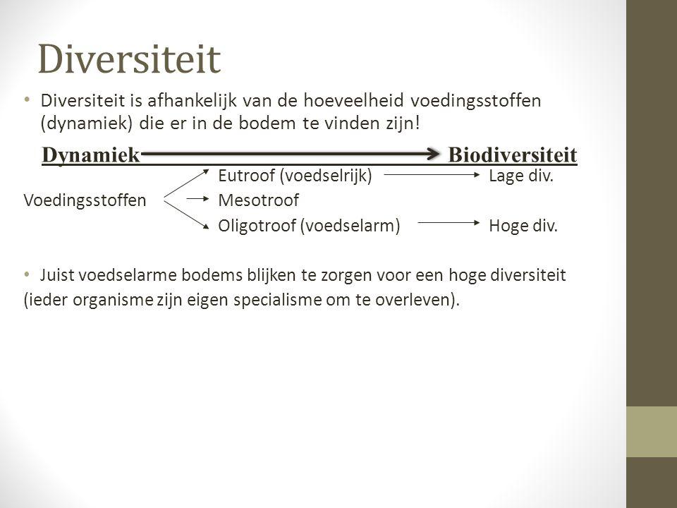Diversiteit Dynamiek Biodiversiteit