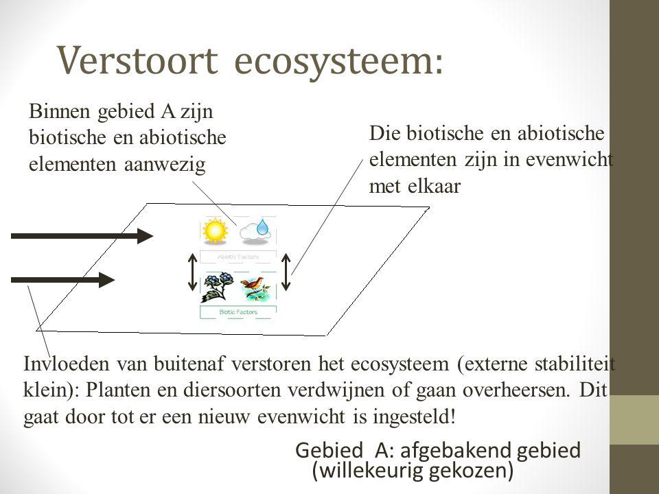 Verstoort ecosysteem: