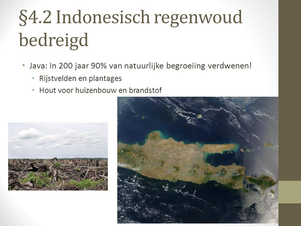 §4.2 Indonesisch regenwoud bedreigd