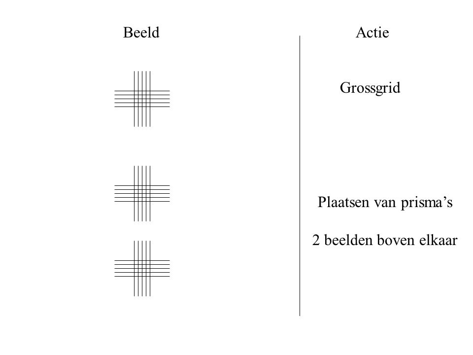 Beeld Actie Grossgrid Plaatsen van prisma's 2 beelden boven elkaar