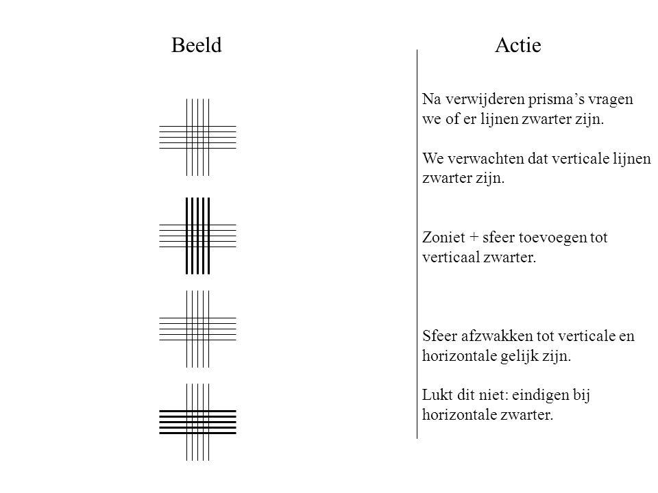 Beeld Actie. Na verwijderen prisma's vragen we of er lijnen zwarter zijn. We verwachten dat verticale lijnen zwarter zijn.