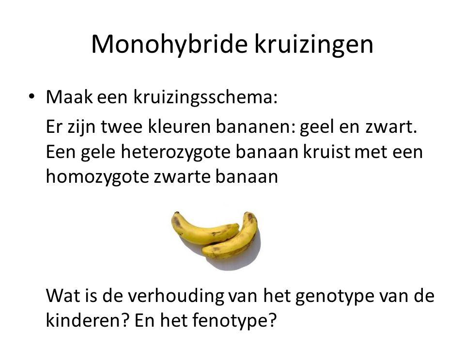 Monohybride kruizingen