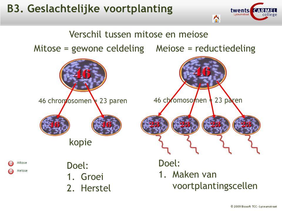 B3. Geslachtelijke voortplanting