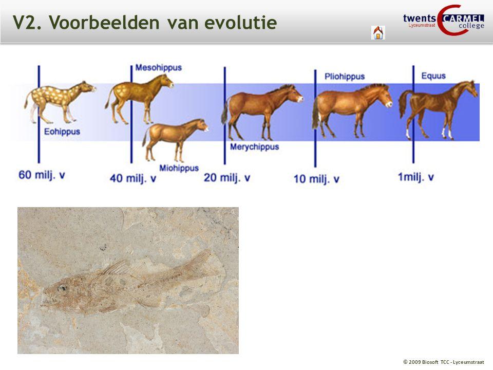 V2. Voorbeelden van evolutie