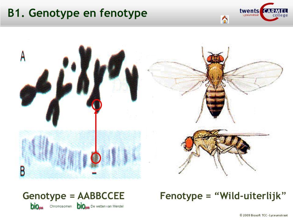 B1. Genotype en fenotype Genotype = AABBCCEE Fenotype = Wild-uiterlijk Chromosomen.