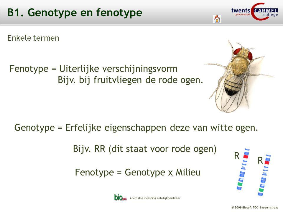 B1. Genotype en fenotype Fenotype = Uiterlijke verschijningsvorm