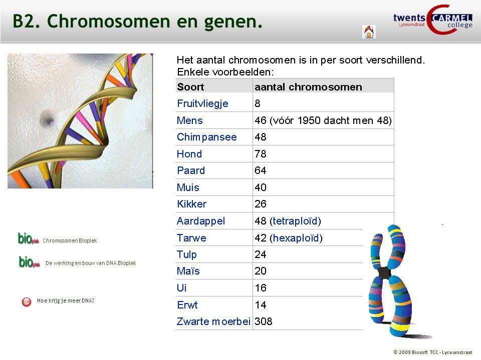 B2. Chromosomen en genen. Chromosomen Bioplek