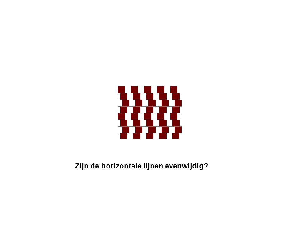 Zijn de horizontale lijnen evenwijdig