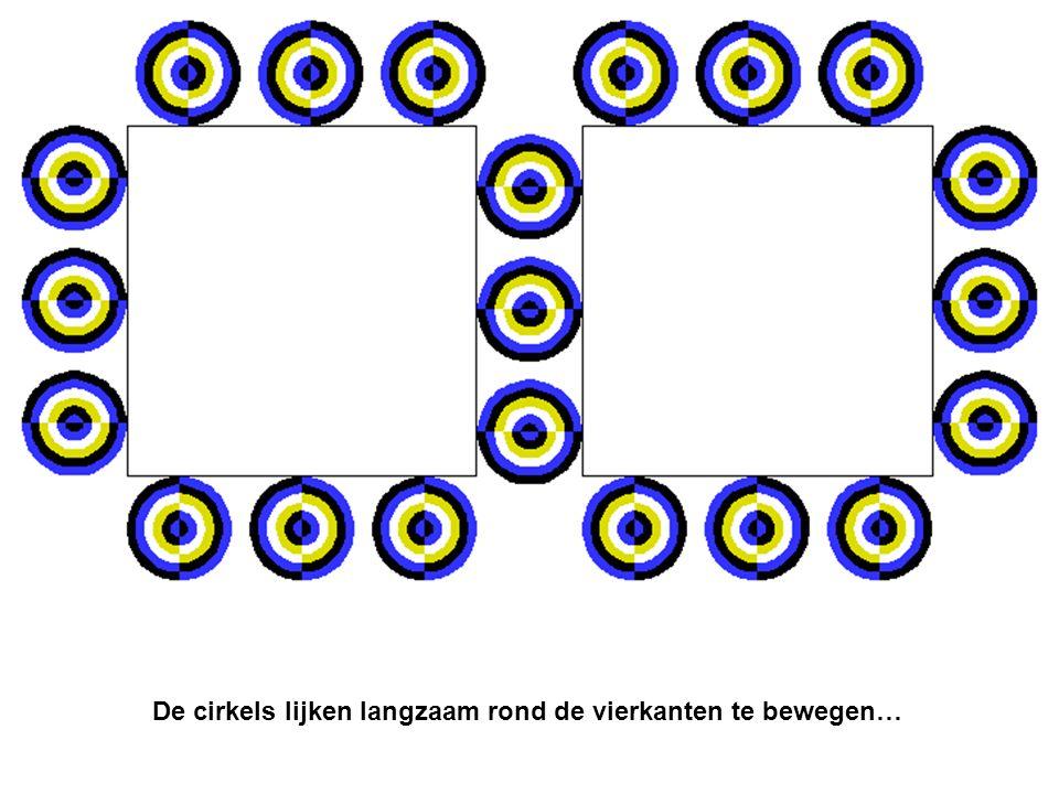 De cirkels lijken langzaam rond de vierkanten te bewegen…