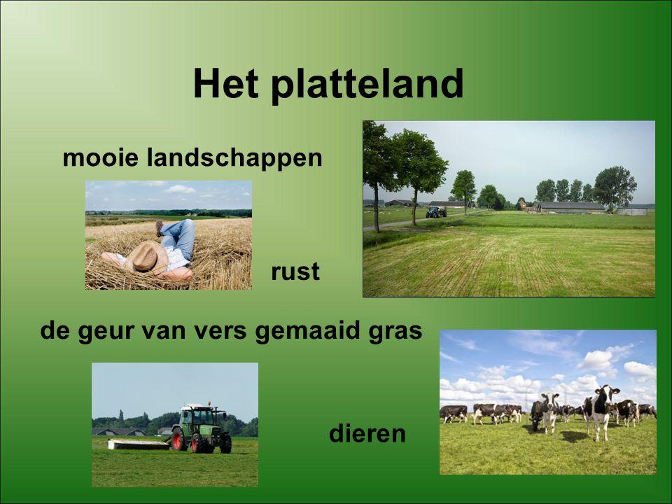 Het platteland mooie landschappen rust de geur van vers gemaaid gras