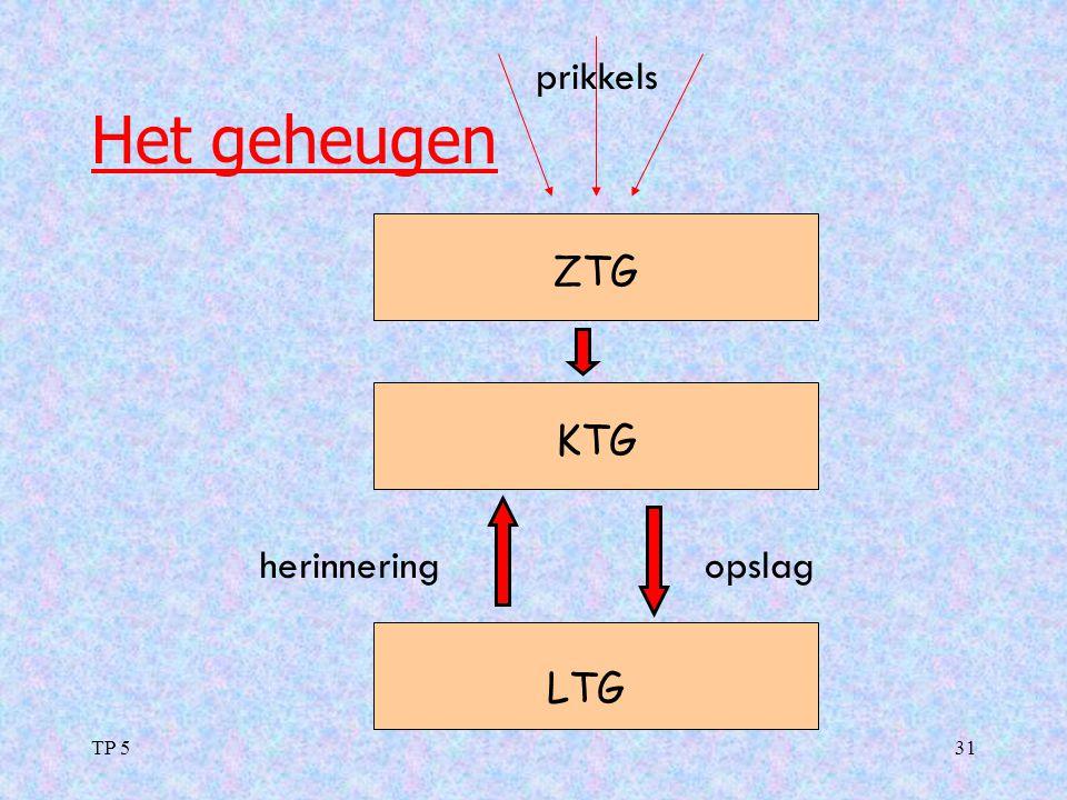 prikkels Het geheugen ZTG KTG herinnering opslag LTG TP 5