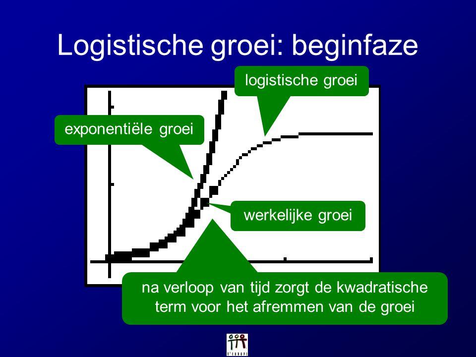 Logistische groei: beginfaze