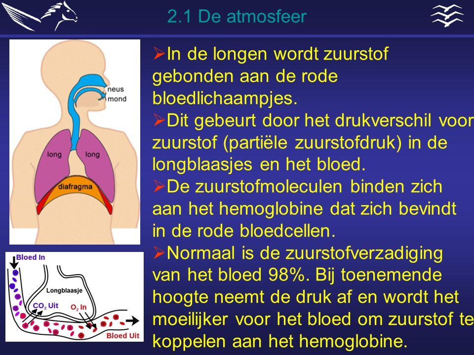 2.1 De atmosfeer In de longen wordt zuurstof gebonden aan de rode bloedlichaampjes.