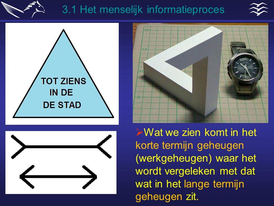 3.1 Het menselijk informatieproces