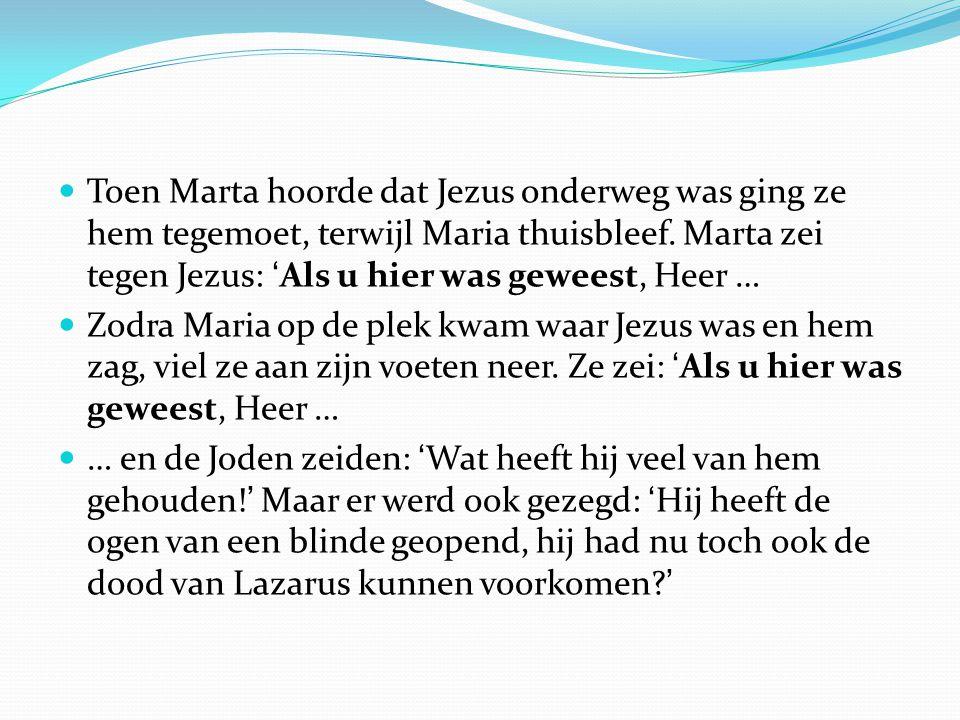 Toen Marta hoorde dat Jezus onderweg was ging ze hem tegemoet, terwijl Maria thuisbleef. Marta zei tegen Jezus: 'Als u hier was geweest, Heer …