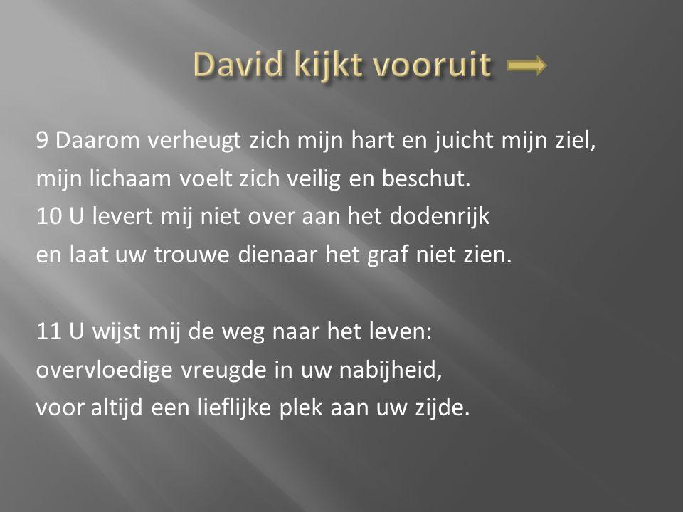 David kijkt vooruit