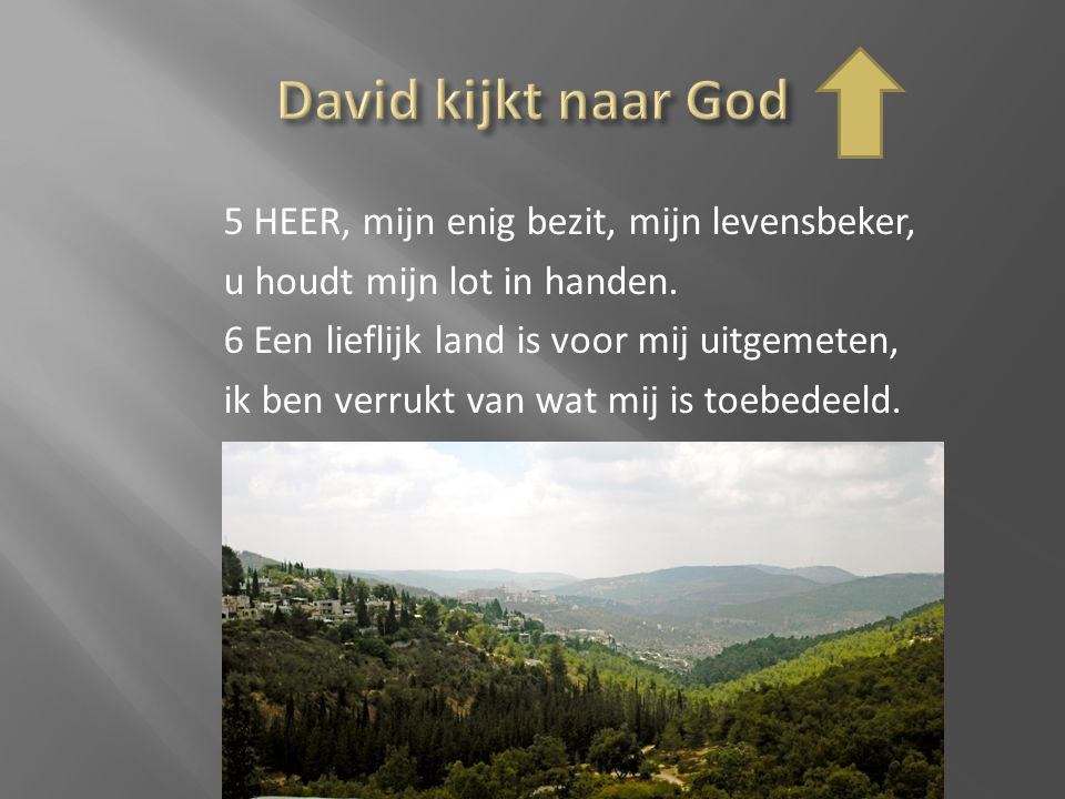 David kijkt naar God