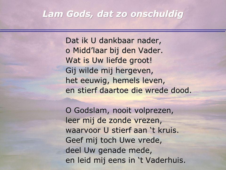 Lam Gods, dat zo onschuldig